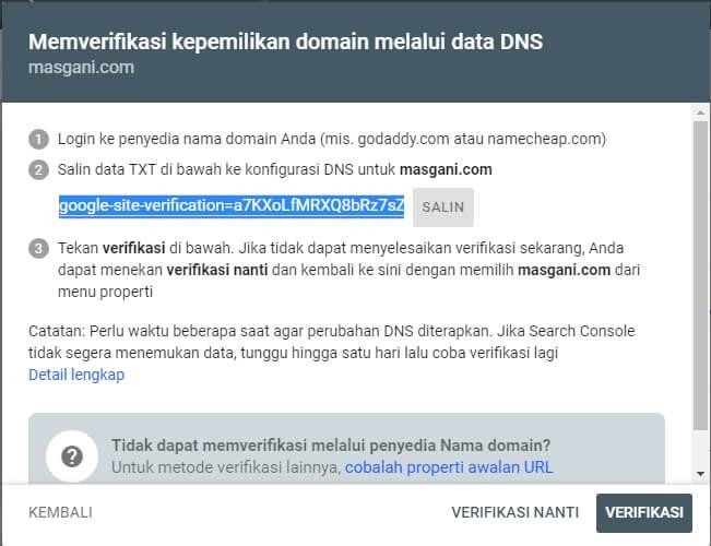 Memverifikasi kepemilikan domain melalui data dns